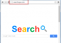 Searchopa.com Search Bar Screenshot