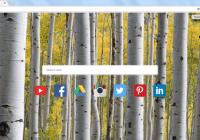 photorext search bar