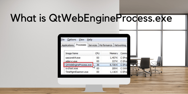 What is QtWebEngineProcess.exe